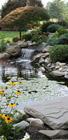 Realizare iazuri, cascade, cursuri de apa