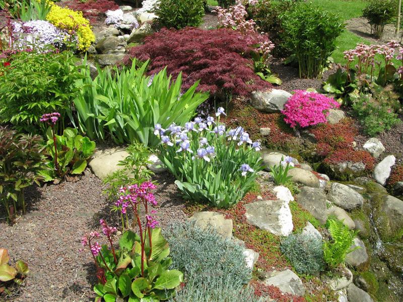 Мой прекрасный сад своими руками фото